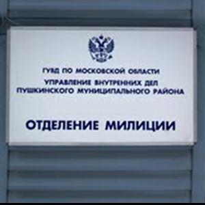 Отделения полиции Троицко-Печерска